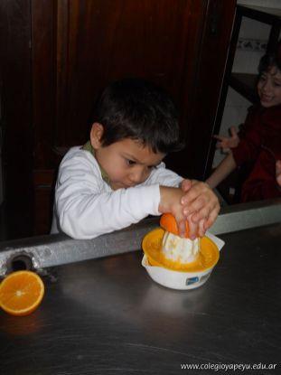 Jugo de Naranjas en Salas de 5 51