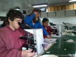 Nos preparamos para las Olimpiadas de Biologia 1
