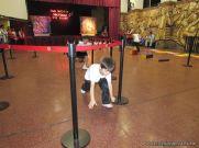 Expo Jardin de Salas de 5 87
