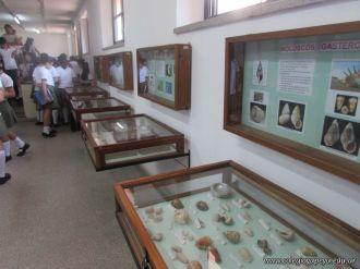 Visita al Museo de Ciencias Naturales 130