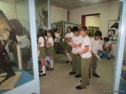 Visita al Museo de Ciencias Naturales 61