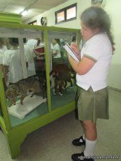 Visita al Museo de Ciencias Naturales 72