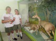 Visita al Museo de Ciencias Naturales 75