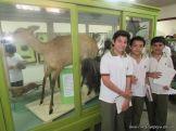 Visita al Museo de Ciencias Naturales 88