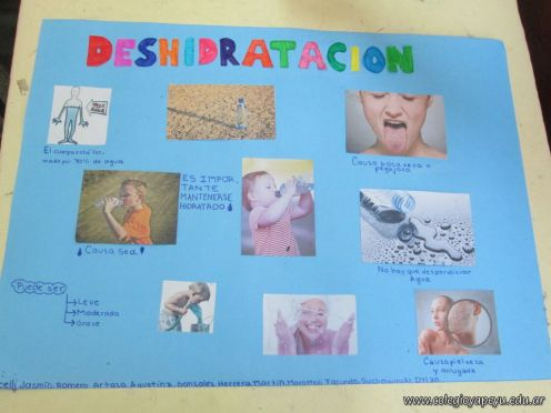 Deshidratacion 6