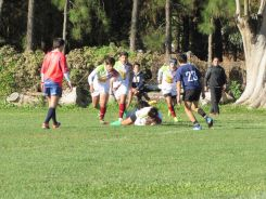 Copa Saint Patrick 11