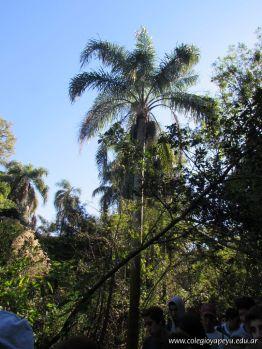 Viaje a los Esteros del Ibera 33