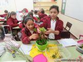 Plantas Acuaticas 7