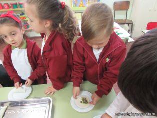 Empanadas de Verdura en Salas de 4 10
