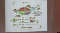 Alimentaion Saludable 16