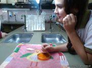 Cultivo de Microorganismos 4