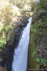 Viaje a Iguazu 115