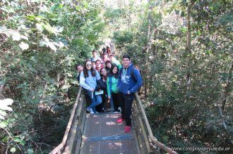 Viaje a Iguazu 119