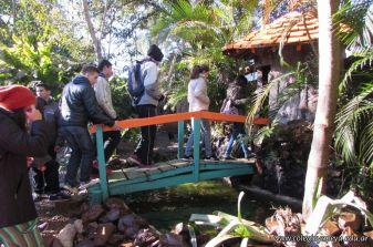 Viaje a Iguazu 39