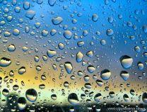 Día de lluvia 1