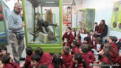 Visita al Museo de Ciencias Naturales 26
