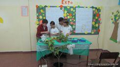 5to-grado-expo-6