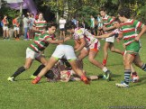Copa Saint Patrick 48