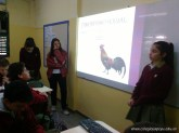 Reproducción de animales 4