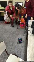 Taller de robótica 24