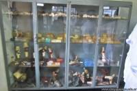 Visita a la Facultad de Ciencias Veterinarias 4