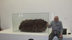 Visita al museo 16