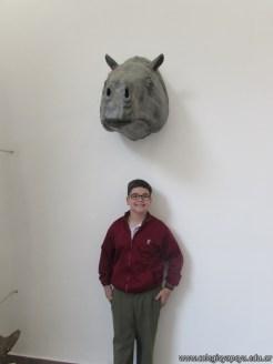 Visita al museo de Ciencias Naturales 16