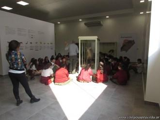Visita al museo de Ciencias Naturales 49