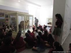 Visita al museo de Ciencias Naturales 55