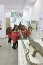 Visita al museo de Cs. Naturales 40