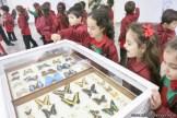 Visita al museo de Cs. Naturales 60