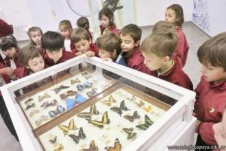 Visita al museo de Cs. Naturales 63