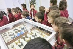 Visita al museo de Cs. Naturales 64