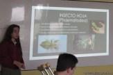 Clase abierta adaptaciones de animales y plantas 5