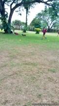 Rugby del ciclo básico 3