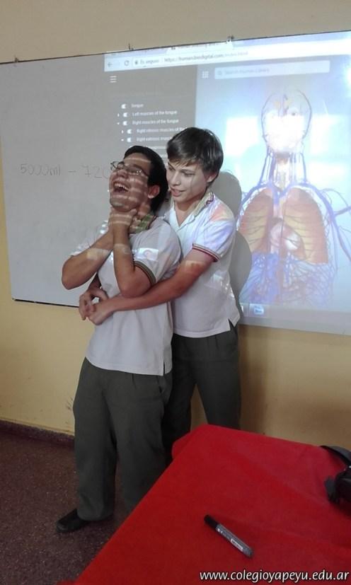 El cuerpo humano en 3D 11