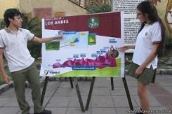 Expo Cruce de los Andes 22