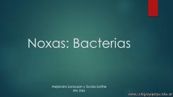 Noxas bacterias 1