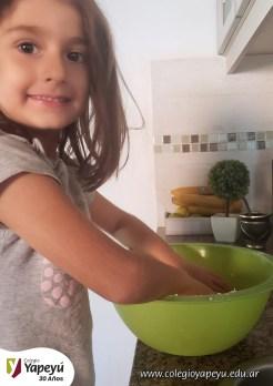Jardineros trabajando en casa (11)