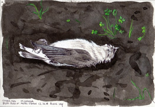 Dead Bird 2015 ink and gouache on paper 5x8 inches