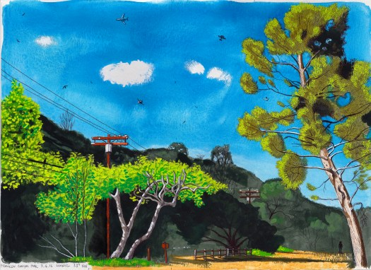 Franklin Canyon Park 3.6.16 Looking 33 Degrees NW 2016 Ink and gouache on paper 10x13.5 inches