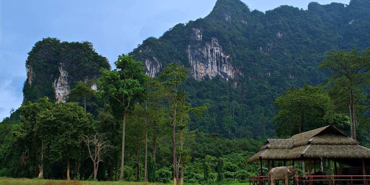 Glamping the New Wave of Ecotourism