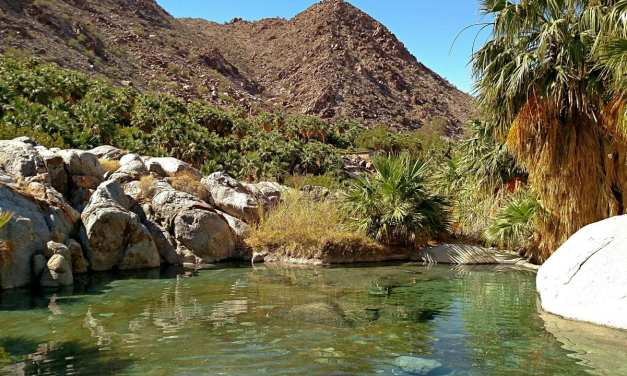 Soaking In Guadalupe Canyon's Secret Springs