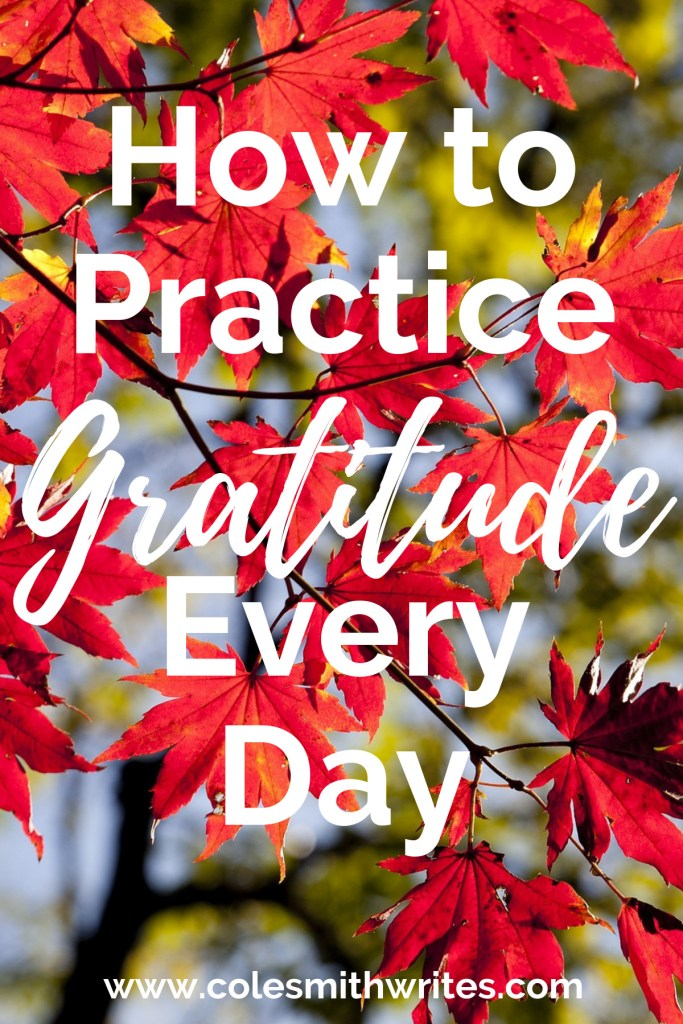 Want to practice gratitude every day? | #edit #mindfulness #creatives #creativity #writing #inspiration