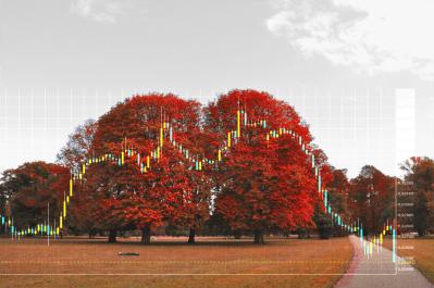 Markets Vs Nature