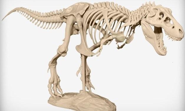 Projeto Esqueleto Do T-Rex