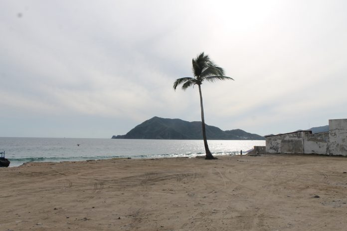nublado palmera 696x463 - ¿Cuáles son los pronósticos para Colima según el Servicio Meteorológico Nacional?