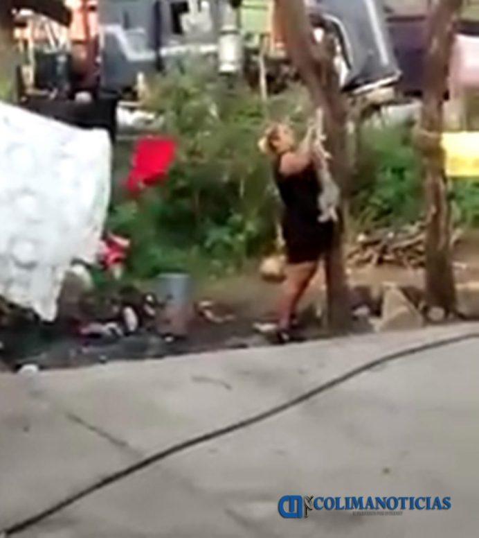 denuncia-asesinato-de-perro