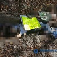 Hallan otros cinco cuerpos en Manzanillo