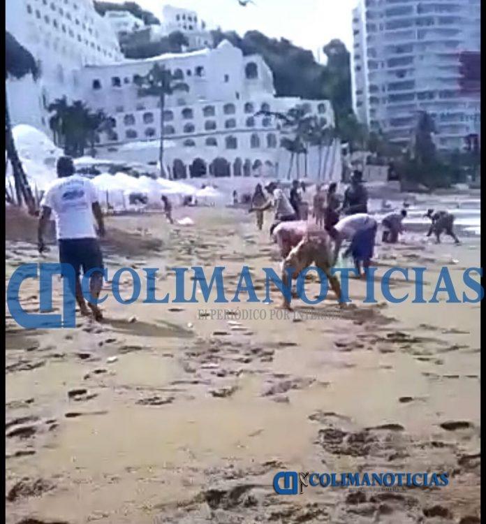Salen peces a la playa La Audiencia 4 696x750 - Salen peces a la playa La Audiencia